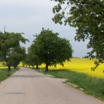 na-ceste