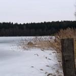 na-rybniku-3