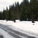 pod-snehem