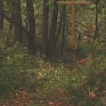 podzim-prisel